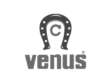 Logo Venus gris